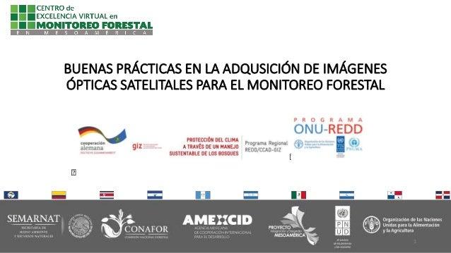 BUENAS PRÁCTICAS EN LA ADQUSICIÓN DE IMÁGENES ÓPTICAS SATELITALES PARA EL MONITOREO FORESTAL 1