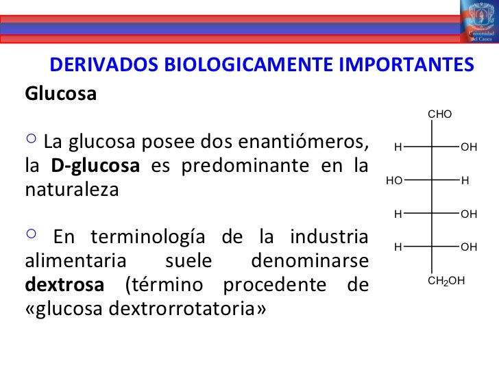 Presentacion carbohidratos
