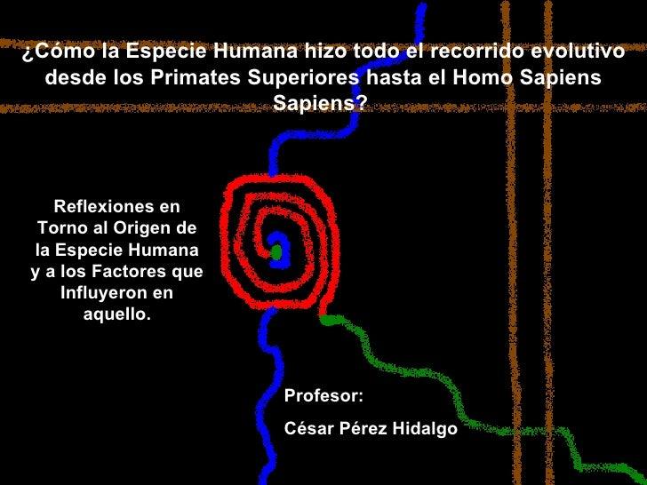 ¿Cómo la Especie Humana hizo todo el recorrido evolutivo desde los Primates Superiores hasta el Homo Sapiens Sapiens?  Ref...