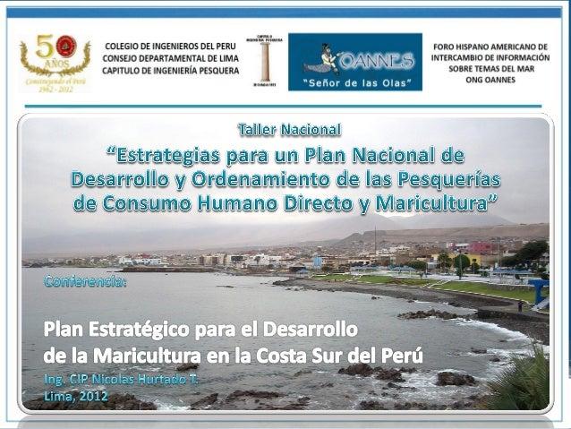 ObjetivosOBJETIVO      Determinar el planeamiento estratégico que necesita la costa sur del Perú para lograrGENERAL       ...