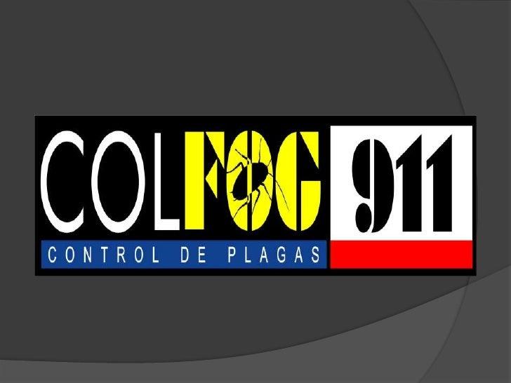   COLFOG 911 es el más    estricto control de    plagas urbanas basado    en la aplicación por    aspersión y el novedos...