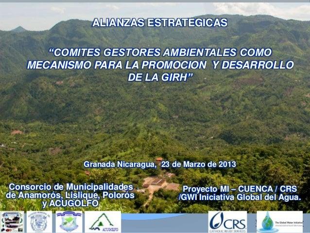 """ALIANZAS ESTRATEGICAS       """"COMITES GESTORES AMBIENTALES COMO    MECANISMO PARA LA PROMOCION Y DESARROLLO                ..."""