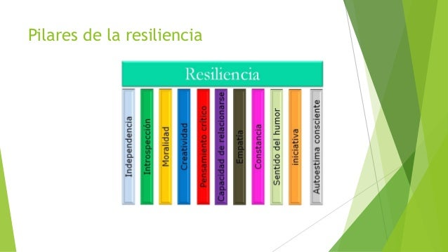 Resiliencia en las bibliotecas: un reto para el siglo XXI