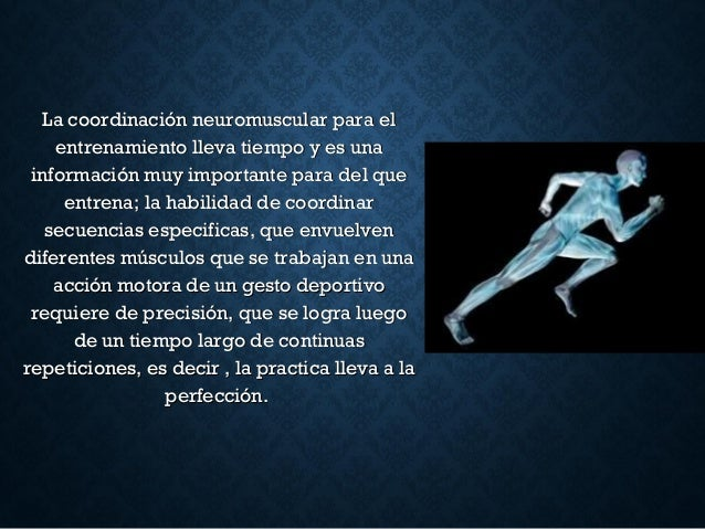 La coordinación neuromuscular para elLa coordinación neuromuscular para el entrenamiento lleva tiempo y es unaentrenamient...