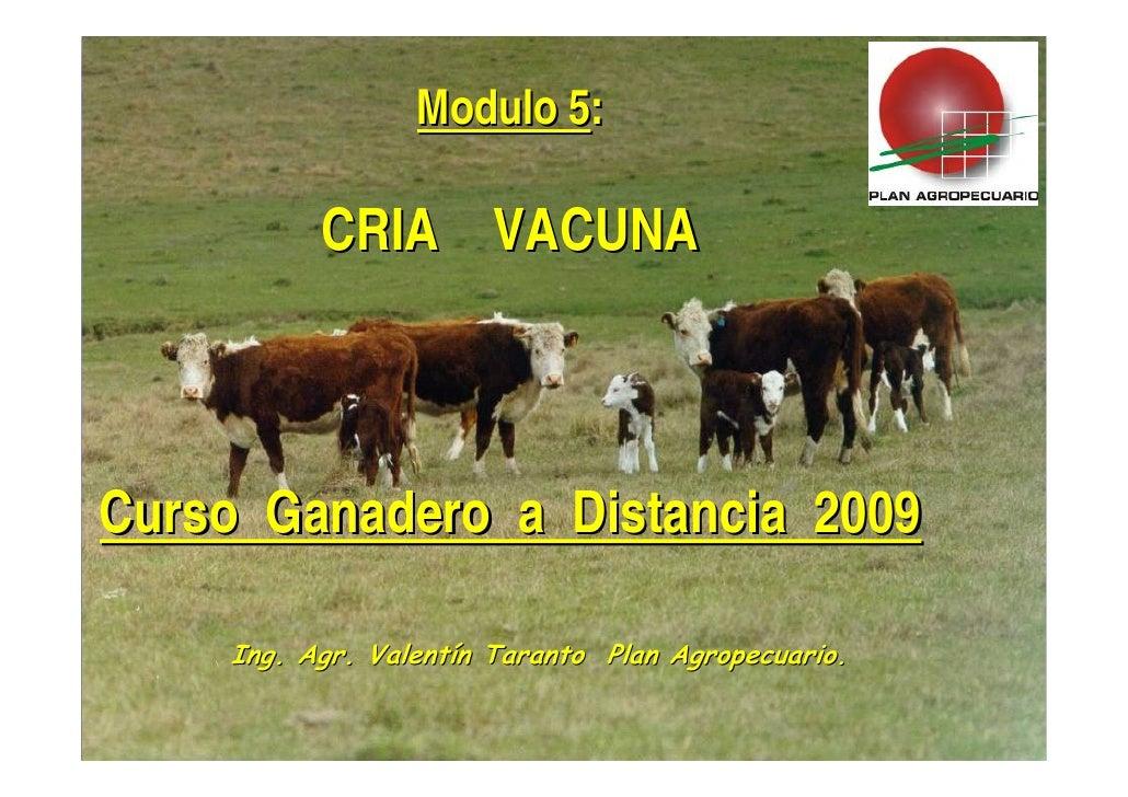 Presentacion CRIA CGD 2010