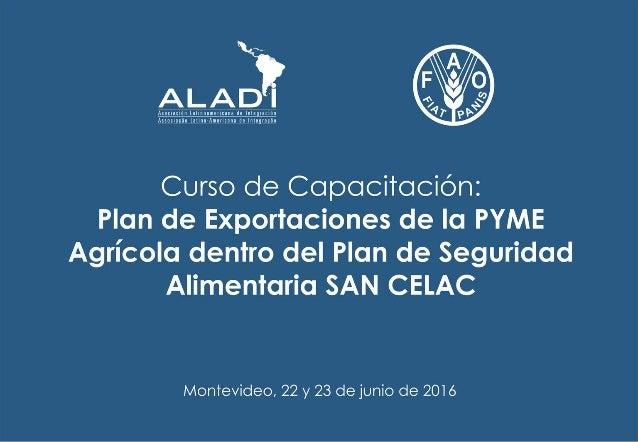 Plan de exportación Orientador: Mariano Mastrangelo