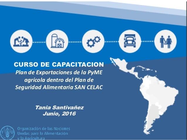 CURSO DE CAPACITACION Plan de Exportaciones de la PyME agrícola dentro del Plan de Seguridad Alimentaria SAN CELAC Tania S...