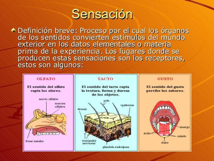 Sensación <ul><li>Definición breve:   Proceso por el cual los órganos de los sentidos convierten estímulos del mundo exter...