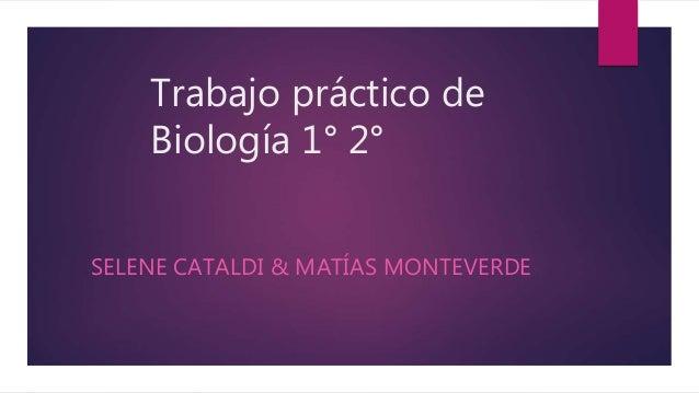 Trabajo práctico de Biología 1° 2° SELENE CATALDI & MATÍAS MONTEVERDE