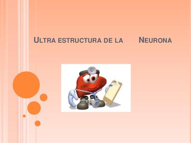 ULTRA ESTRUCTURA DE LA NEURONA