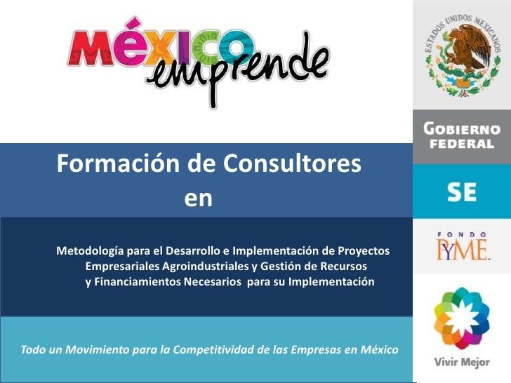 Formación de Consultores                en      Metodología para el Desarrollo e Implementación de Proyectos          Empr...