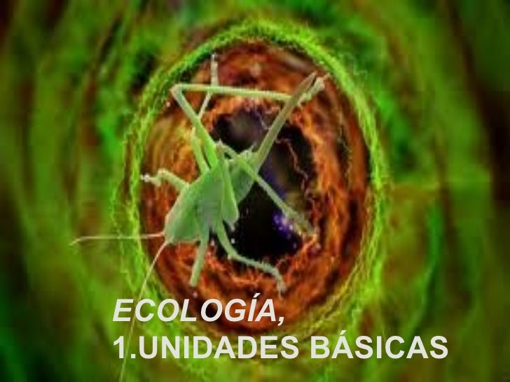 ECOLOGÍA,  1.UNIDADES BÁSICAS