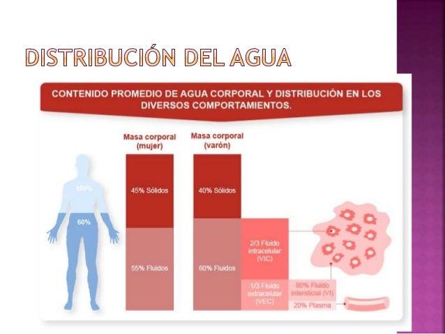  DEFINICION:  Son unas sustancias, que al disolverse en el agua de las células del cuerpo se rompen en pequeñas partícul...