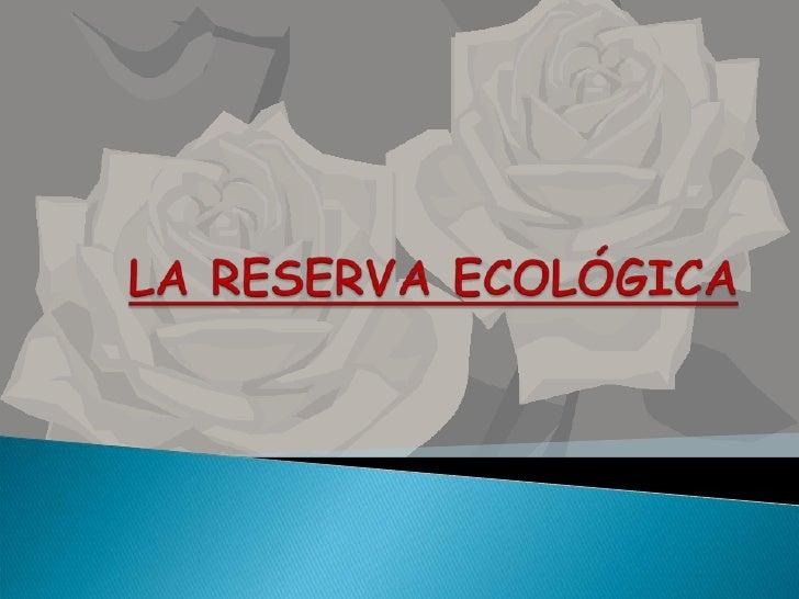 LA RESERVA ECOLÓGICA<br />