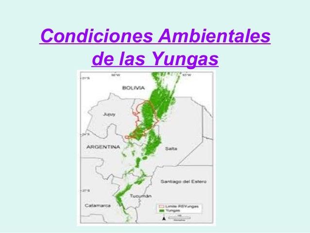 Condiciones Ambientales     de las Yungas