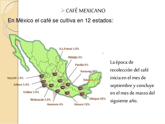 Ef  Cafe Mexicano En Mexico El