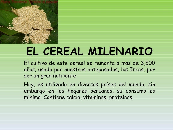 EL CEREAL MILENARIO El cultivo de este cereal se remonta a mas de 3,500 años, usado por nuestros antepasados, los Incas, p...