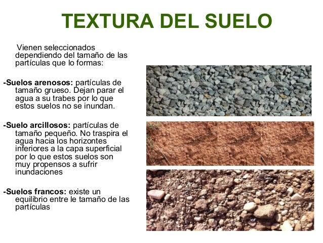 textura del suelo