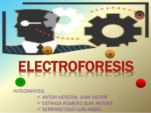 ELECTROFORESIS + + - - + INTEGRANTES:  ANTON HEREDIA JUAN VICTOR  ESTRADA ROMERO JEAN ANTONY  SERRANO CAJO LUIS ANGEL 1