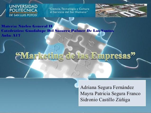 Materia: Núcleo General IICatedrático: Guadalupe Del Socorro Palmer De Los SantosAula: A17                                ...