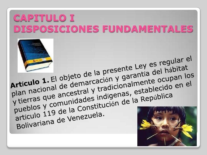 Presentación De pueblos indígenas  Slide 2