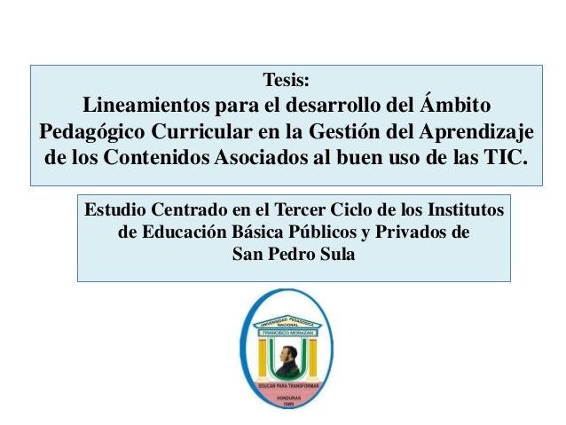 Tesis: Lineamientos para el desarrollo del Ámbito Pedagógico Curricular en la Gestión del Aprendizaje de los Contenidos As...