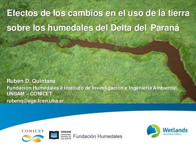 Efectos de los cambios en el uso de la tierra sobre los humedales del Delta del Paraná Rubén D. Quintana Fundación Humedal...