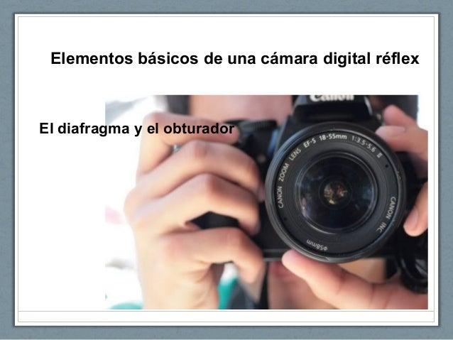 Elementos básicos de una cámara digital réflex El diafragma y el obturador