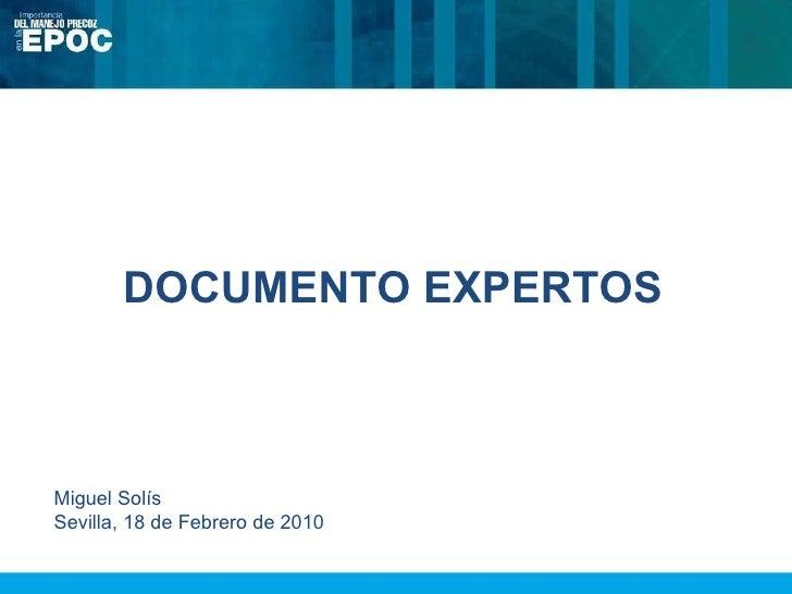 DOCUMENTO EXPERTOS Miguel Solís Sevilla, 18 de Febrero de 2010