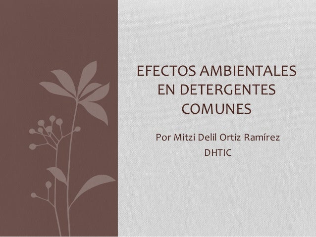 Por Mitzi Delil Ortiz Ramírez DHTIC EFECTOS AMBIENTALES EN DETERGENTES COMUNES