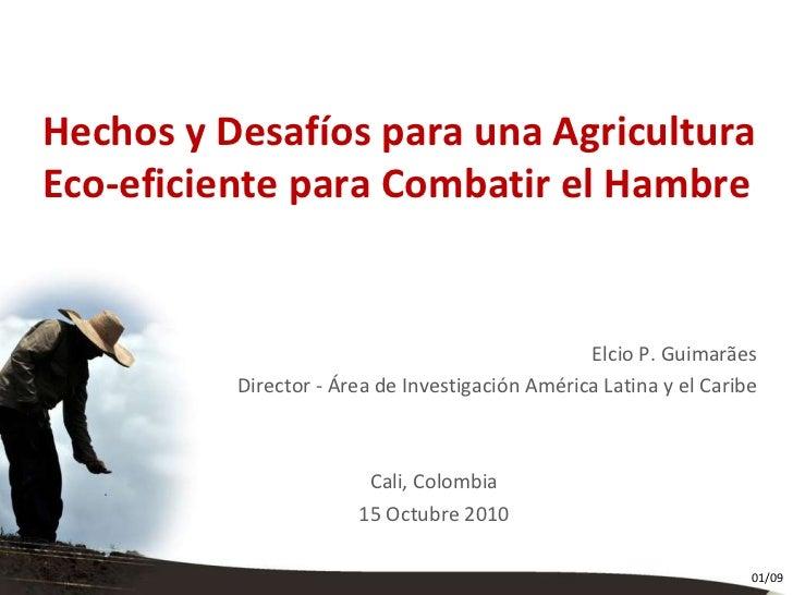 Titulo Titulo Creditos Hechos y Desafíos para una Agricultura Eco-eficiente para Combatir el Hambre Elcio P. Guimarães Dir...