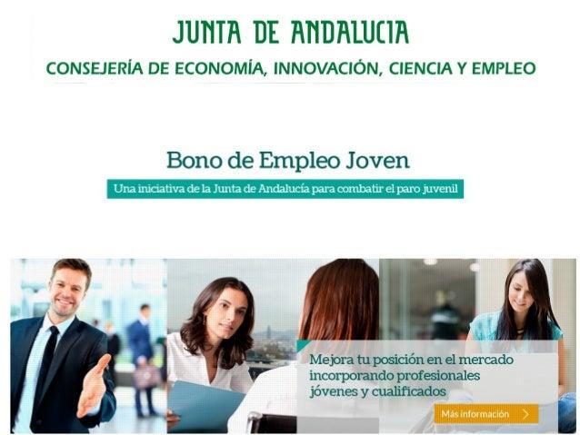 Recuperación del Empleo Para tratar de animar y apoyar a las empresas en la senda de la restauración económica y contribui...