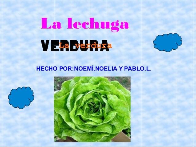 La lechuga verdura   La verduraHECHO POR:NOEMÍ,NOELIA Y PABLO.L.