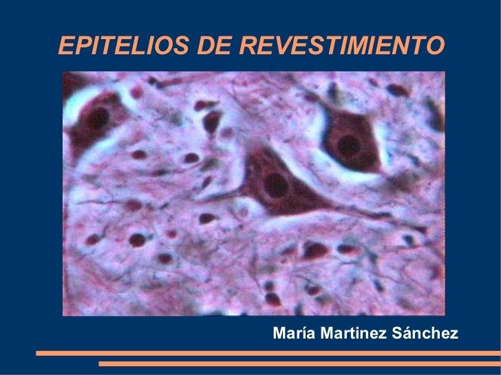 EPITELIOS DE REVESTIMIENTO María Martinez Sánchez