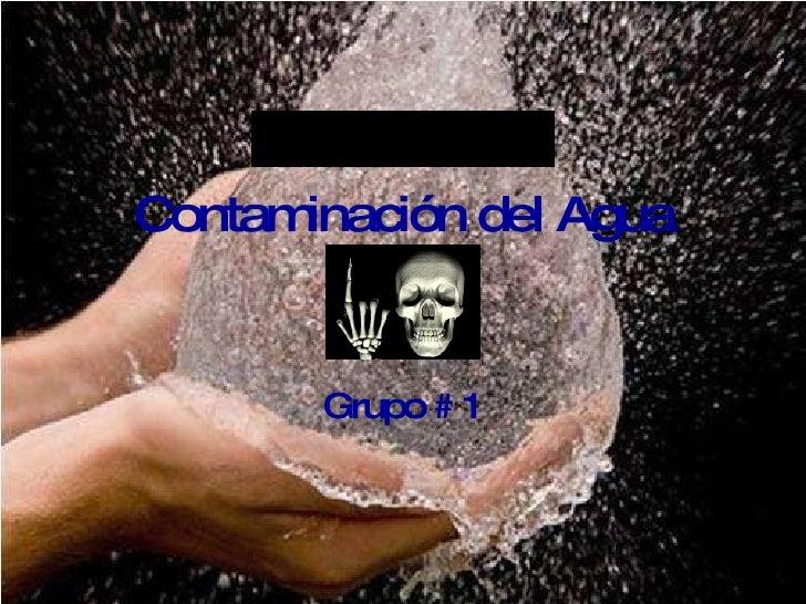 Contaminación del Agua Grupo # 1