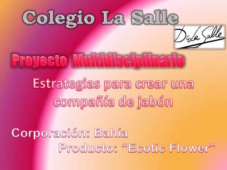 Colegio La Salle<br />Proyecto  Multidisciplinario<br />Estrategias para crear una <br />compañía de jabón<br />Corporació...