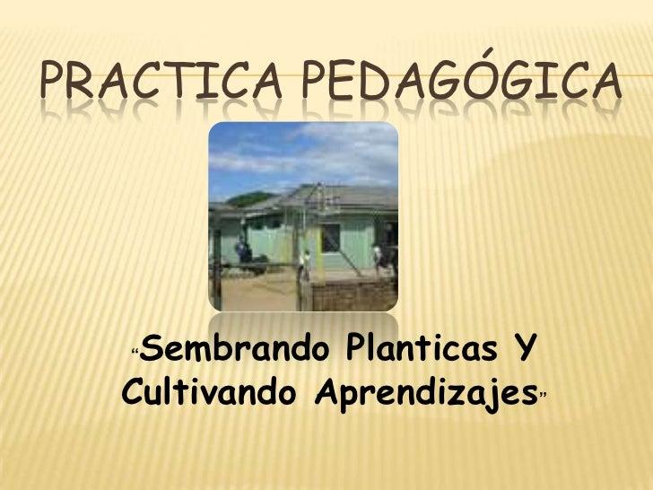 """PRACTICA PEDAGÓGICA  """"Sembrando Planticas Y  Cultivando Aprendizajes"""""""
