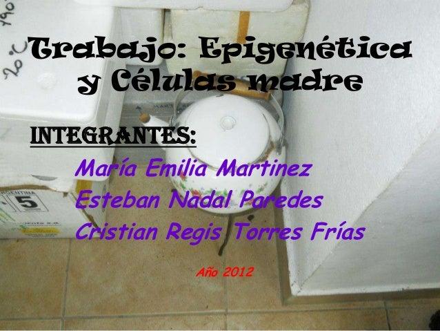 Trabajo: Epigenéticay Células madreIntegrantes:María Emilia MartinezEsteban Nadal ParedesCristian Regis Torres FríasAño 2012