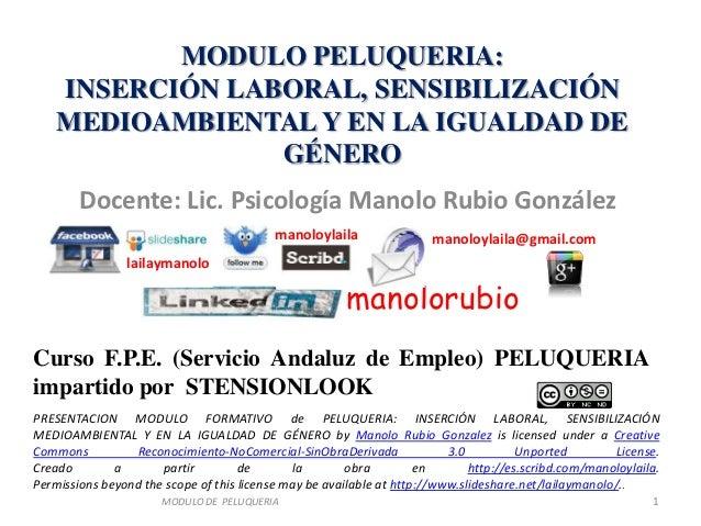 MODULO PELUQUERIA:    INSERCIÓN LABORAL, SENSIBILIZACIÓN    MEDIOAMBIENTAL Y EN LA IGUALDAD DE                 GÉNERO     ...