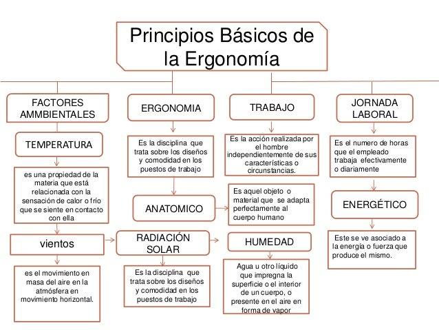 Mapa conceptual de los principios basicos de la ergonomia for Caracteristicas de la ergonomia