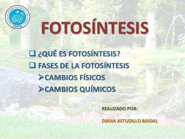 FOTOSÍNTESIS ¿QUÉ ES FOTOSÍNTESIS? FASES DE LA FOTOSÍNTESIS  CAMBIOS FÍSICOS  CAMBIOS QUÍMICOS                  REALIZ...