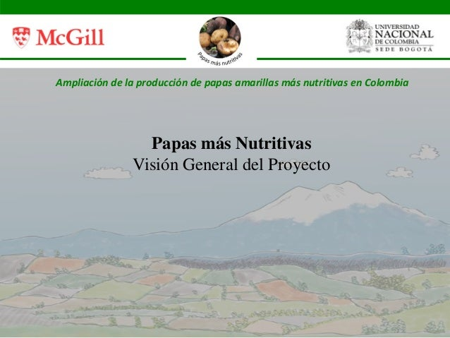 Ampliación de la producción de papas amarillas más nutritivas en Colombia Papas más Nutritivas Visión General del Proyecto