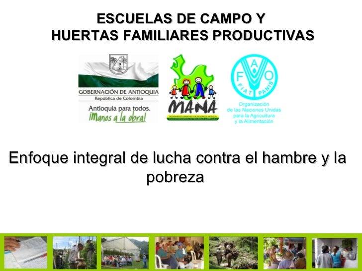 ESCUELAS DE CAMPO Y  HUERTAS FAMILIARES PRODUCTIVAS Enfoque integral de lucha contra el hambre y la pobreza