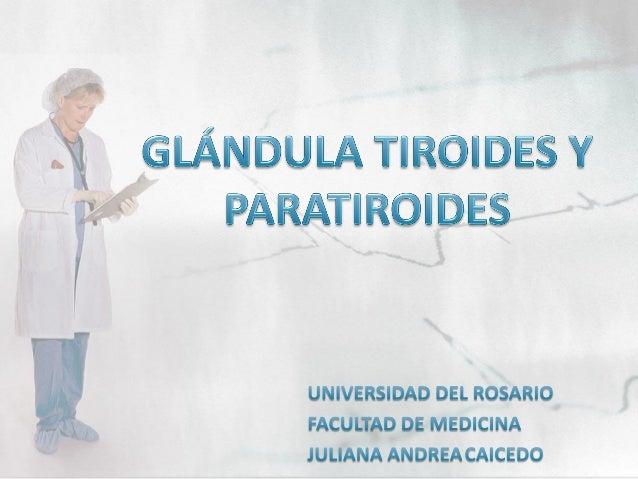 Ver, http://www.rincondesalud.com/la-tiroides/