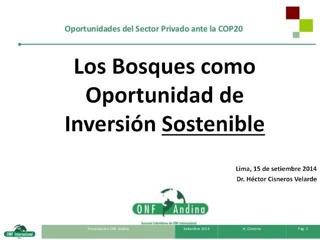 Presentación ONF Andina  Setiembre 2014  H. Cisneros  Pag. 1  Oportunidades del Sector Privado ante la COP20