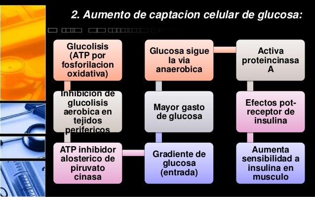 hipoglucemiantes e insulinas