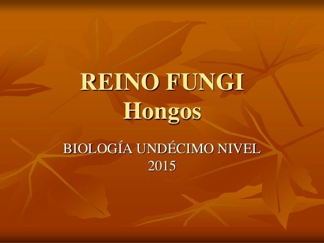 REINO FUNGI Hongos BIOLOGÍA UNDÉCIMO NIVEL 2015