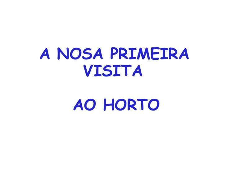 A NOSA PRIMEIRA    VISITA   AO HORTO