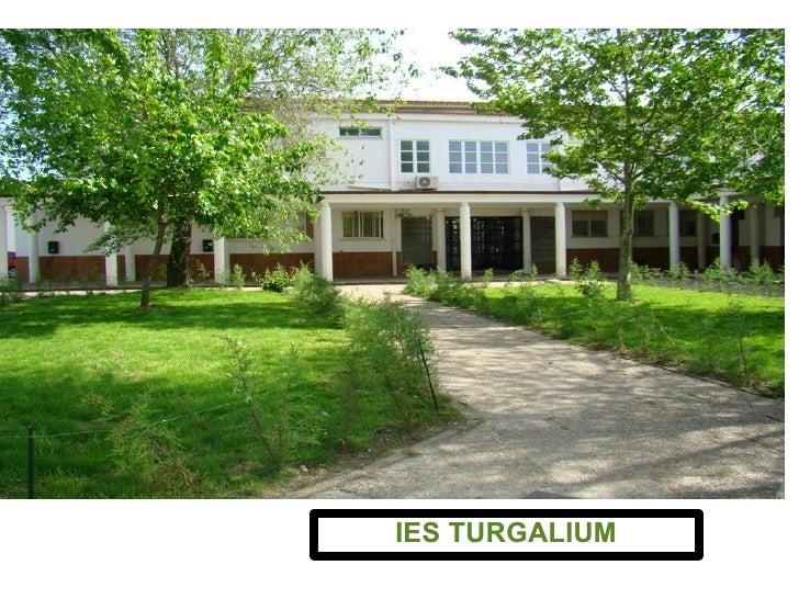 BIENVENIDOS A NUESTRO CENTRO DE ENSEÑANZA PÚBLICA IES TURGALIUM IES TURGALIUM
