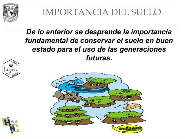 Presentacion importancia del suelo apartado i for Importancia de los suelos